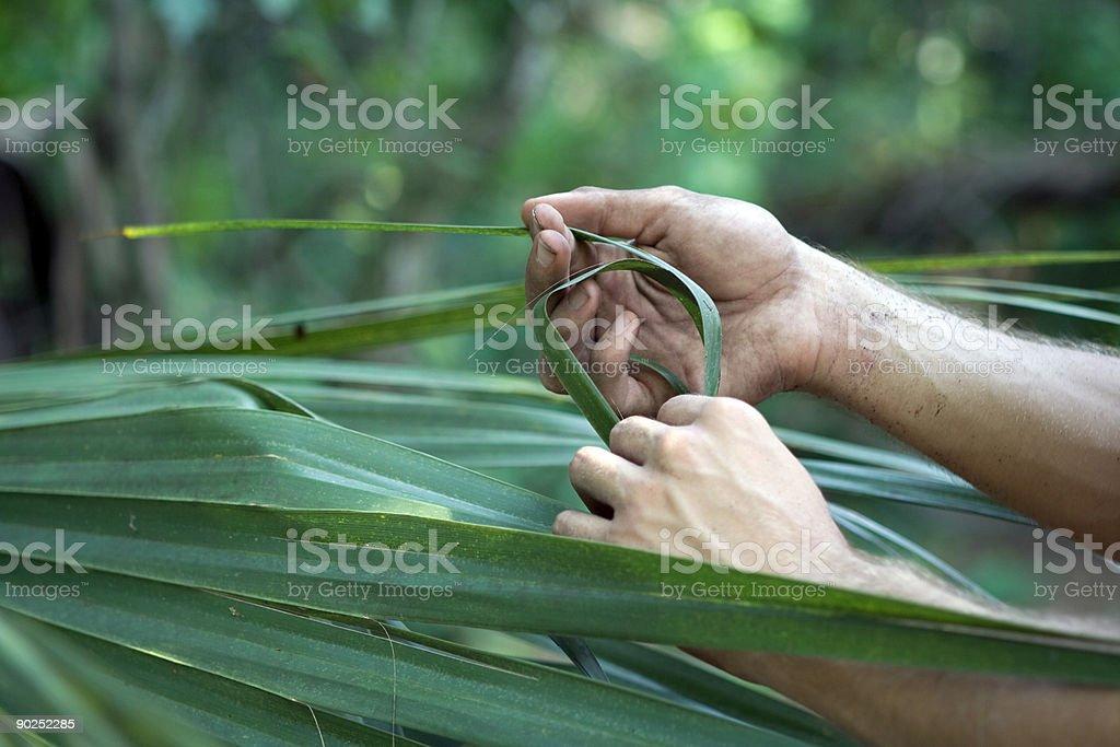 Man meets Nature royalty-free stock photo