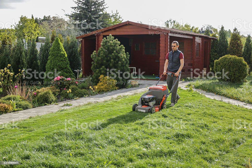 man mowing lawn in the backyard stock photo