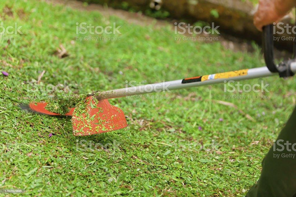 Man mowing lawn royalty-free stock photo