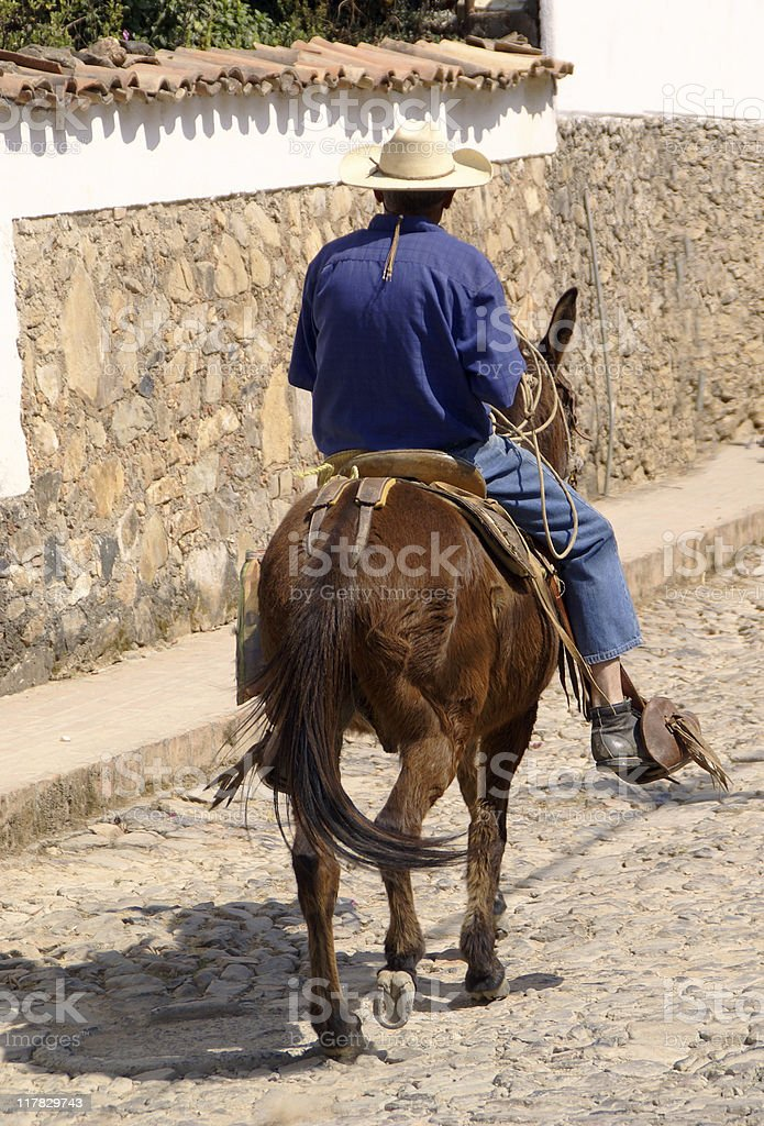 Man on a Mule royalty-free stock photo