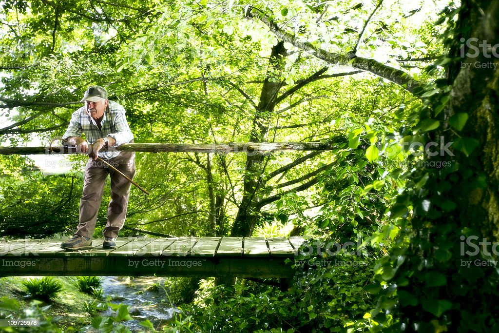 Man on Foot Bridge in Forest royalty-free stock photo