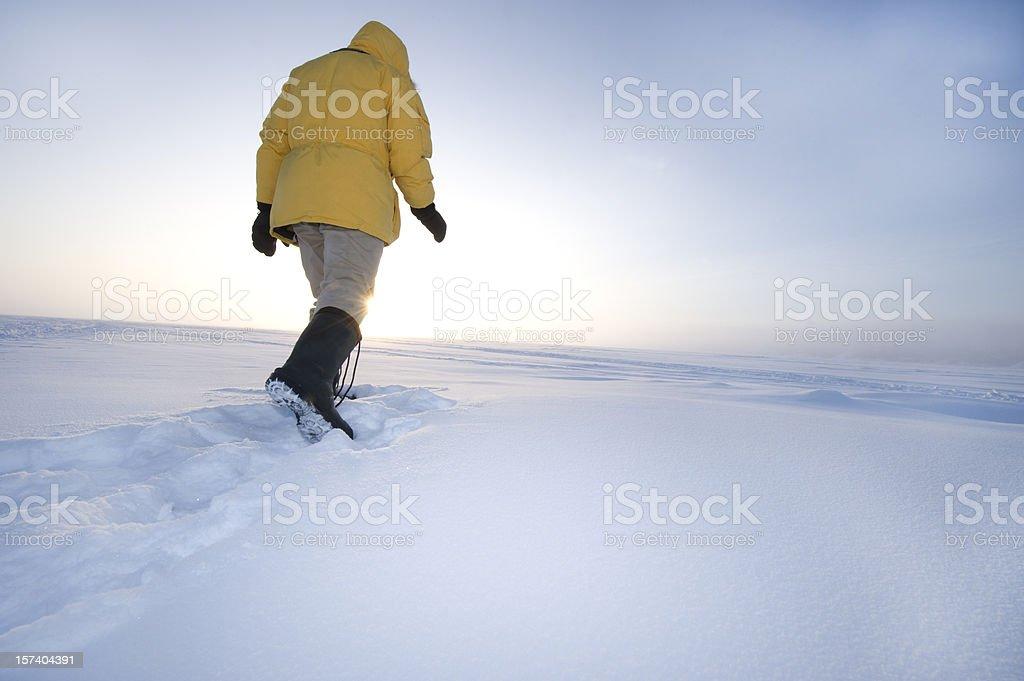 Man on the Arctic Tundra. royalty-free stock photo