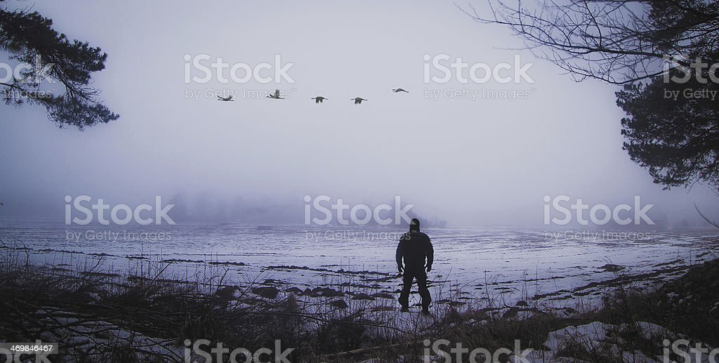 Man on the field in the mist stock photo