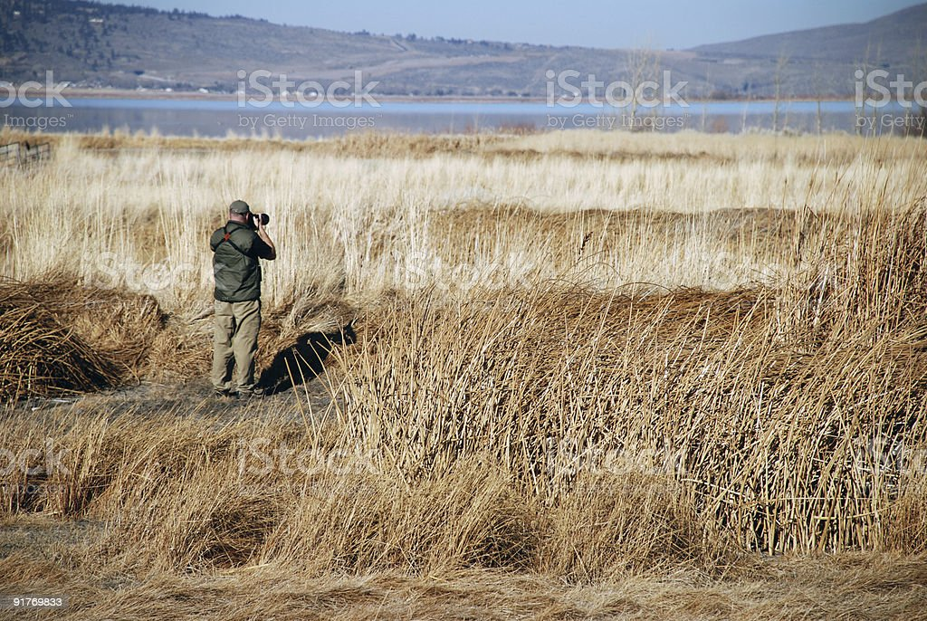Man Photographing in Field royalty-free stock photo