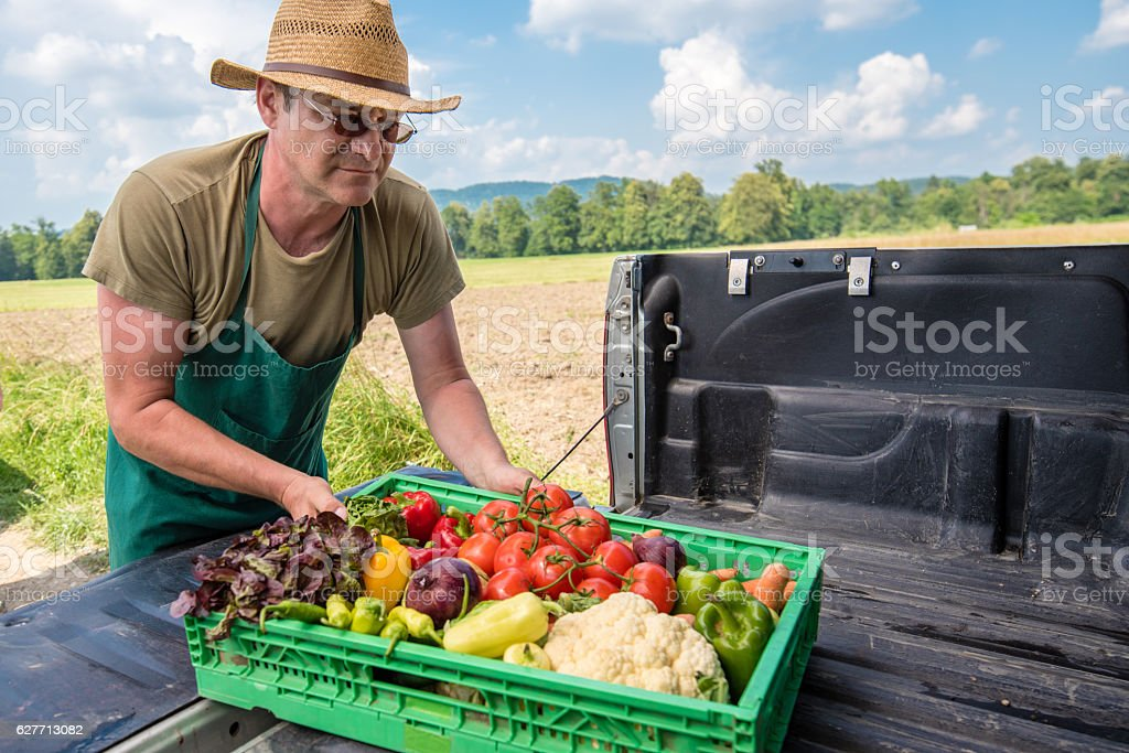 Man placing container of fresh vegetables stock photo