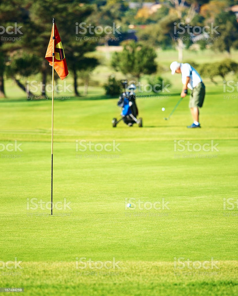 Man playing golf on a green course royalty-free stock photo