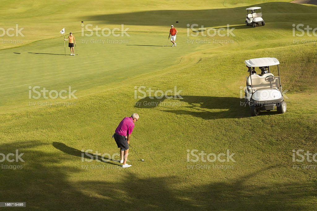 Man Playing Golf With Friends royalty-free stock photo