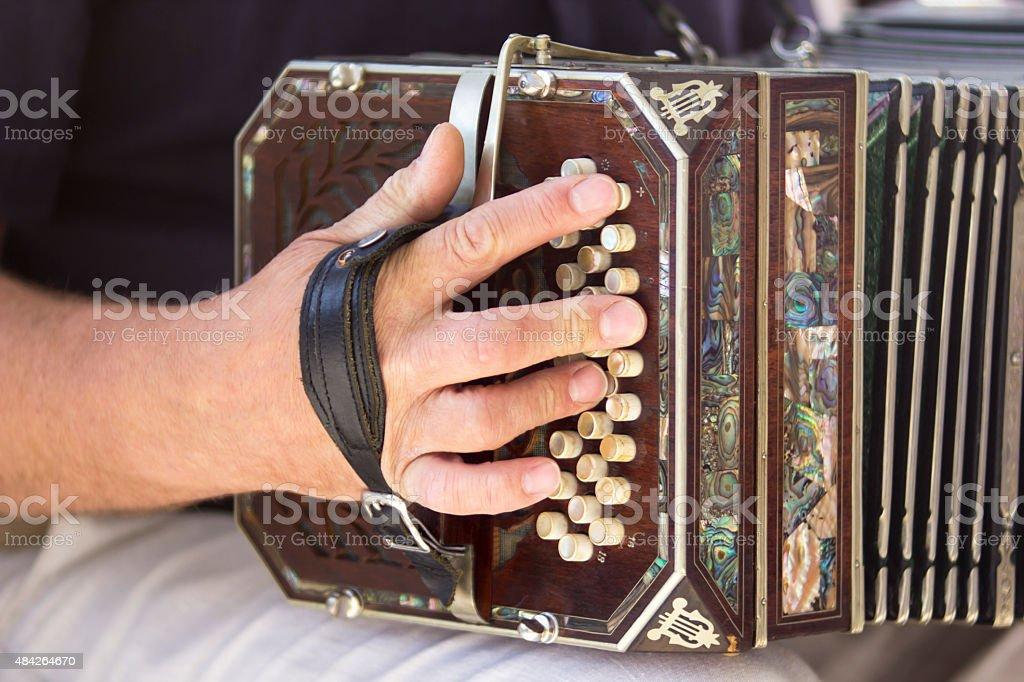 Man playing the bandoneon stock photo