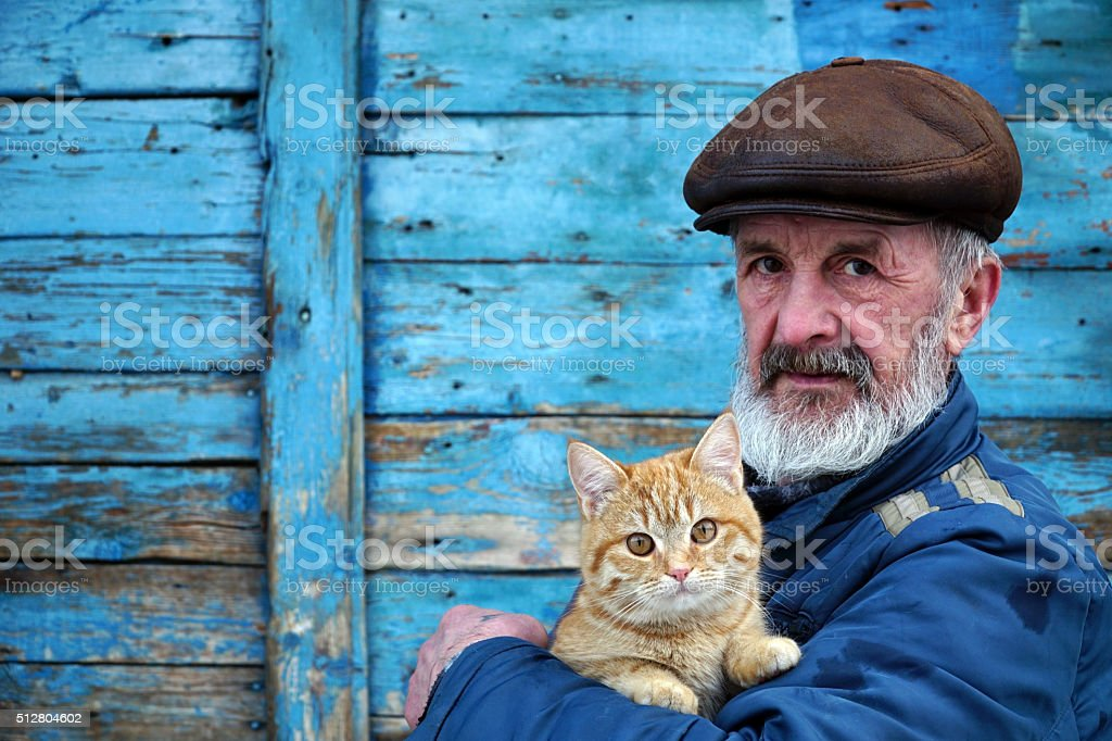 man playing with a cat on his hands stock photo