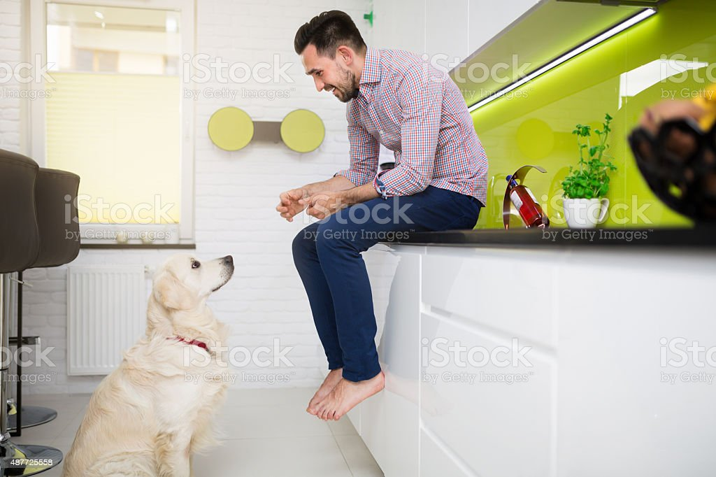 Man playing with his beloved dog stock photo