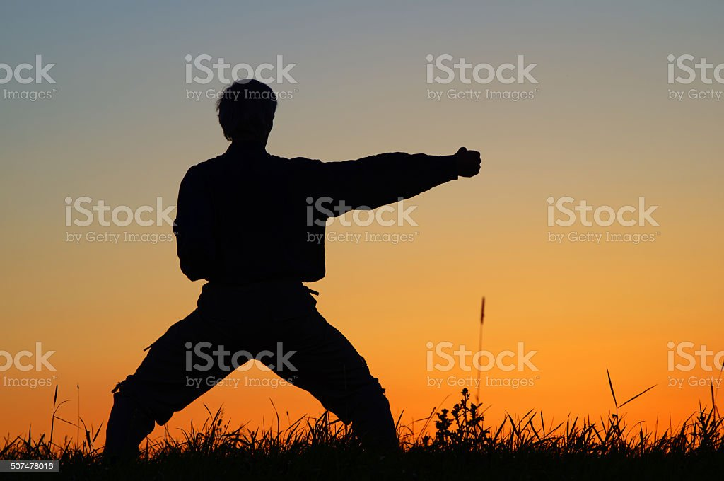 Man practicing karate on the grassy horizon after sunset. stock photo