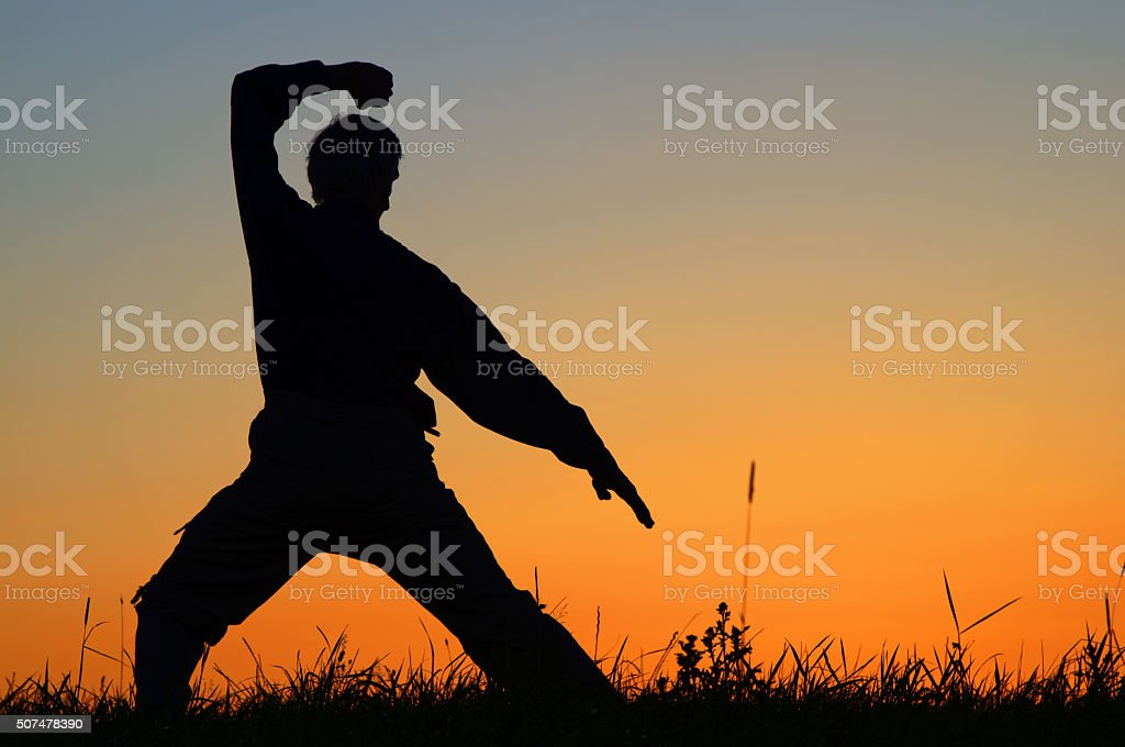 Man practicing karate on the grassy horizon after sunset stock photo