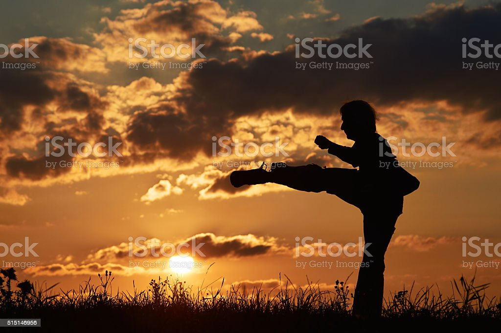 Man practicing karate on the grassy horizon at sunset. stock photo