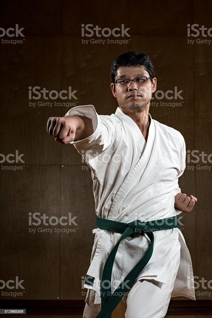 Man practicing karate stock photo