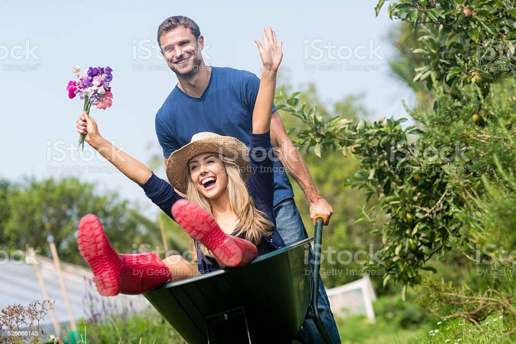 Man pushing his girlfriend in a wheelbarrow stock photo