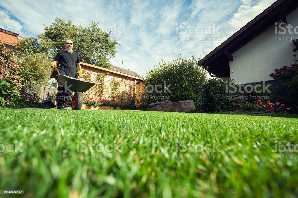 Man pushing wheelbarrow in  backyard at his home stock photo