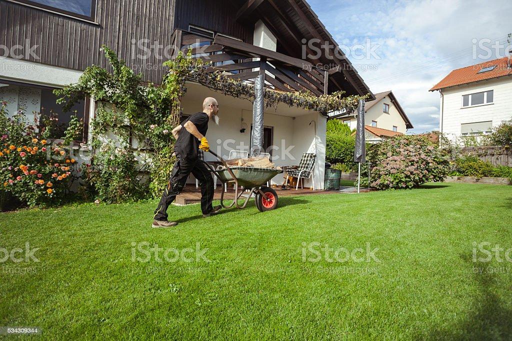 Man pushing wheelbarrow loaded with firewood stock photo