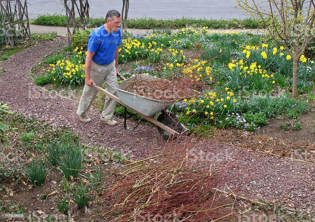 Man pushing wheelbarrow royalty-free stock photo