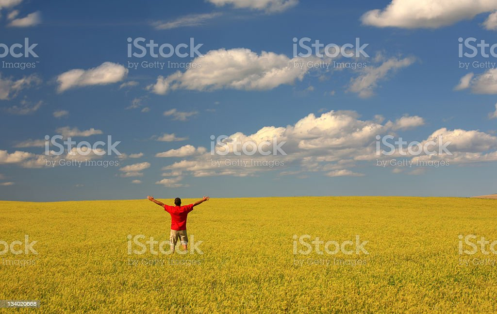 A man raises his hands on the air in a yellow clover field royalty-free stock photo