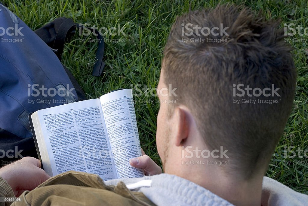 Man reading a book on the grass from a high angle view royalty-free stock photo