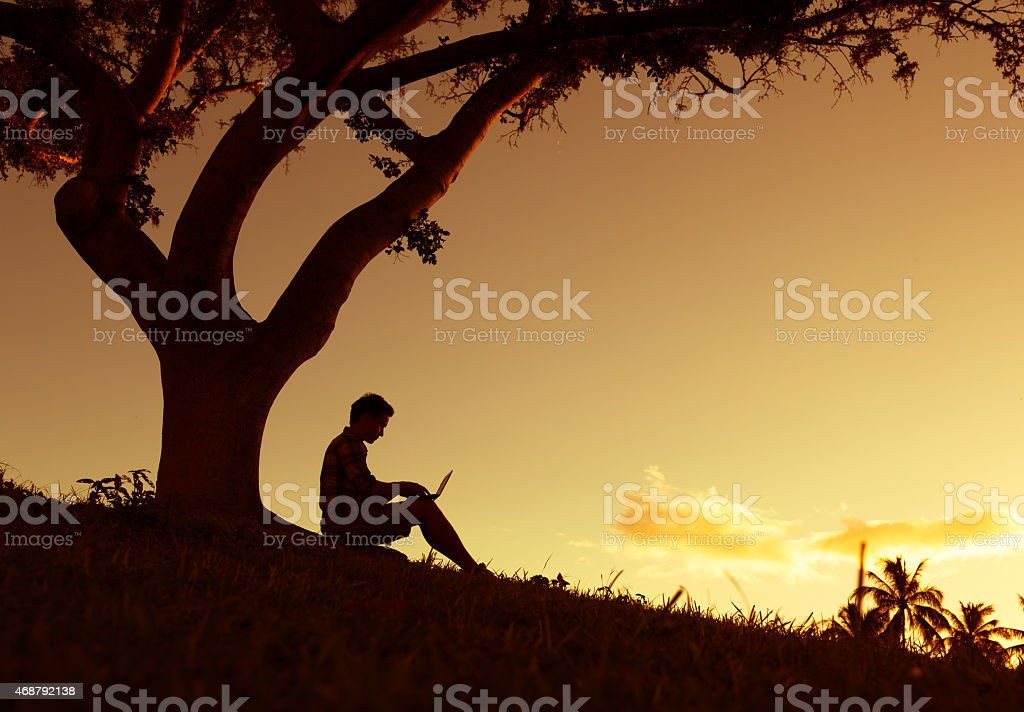Man reading in the park stock photo