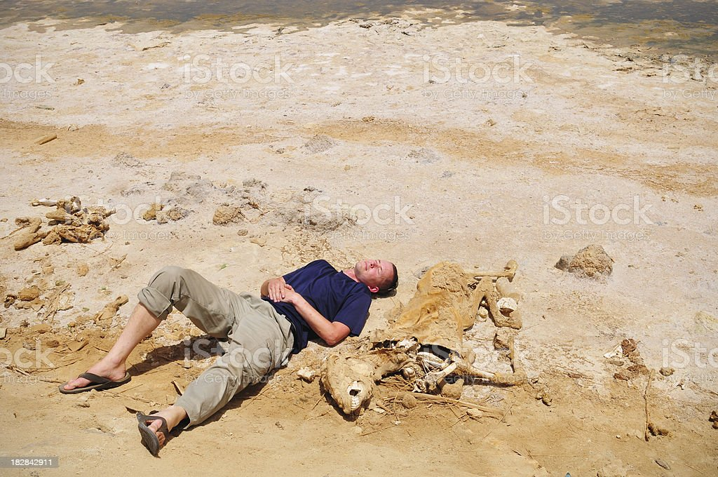 Man lying next to desiccated donkey in Egypt's Siwa Oasis stock photo