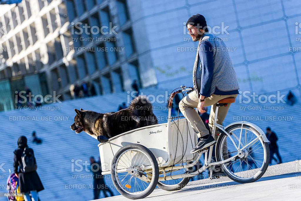 Man ride on a tricycle with his dog in town stock photo