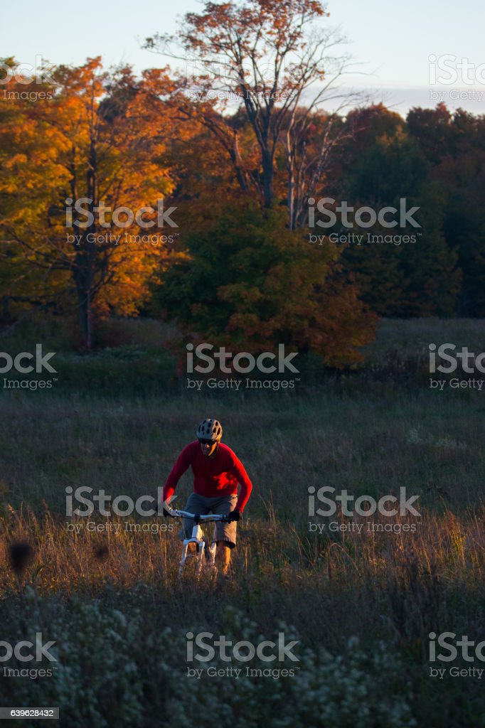 Man rides a mountain bike on single track at sunset stock photo
