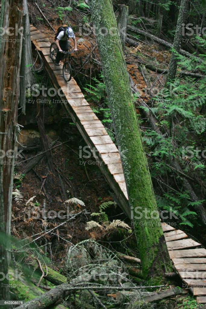 A man rides a wooden bridge on his downhill mountain bike in British Columbia, Canada. stock photo