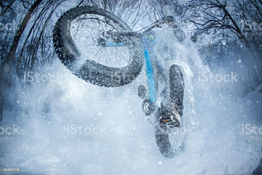 Man rides fat bike in the forest stock photo