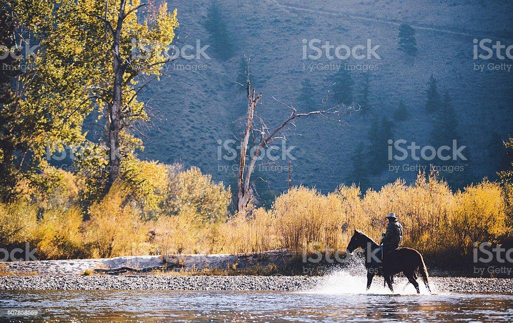Man rides horse through shallow water along riverbank stock photo