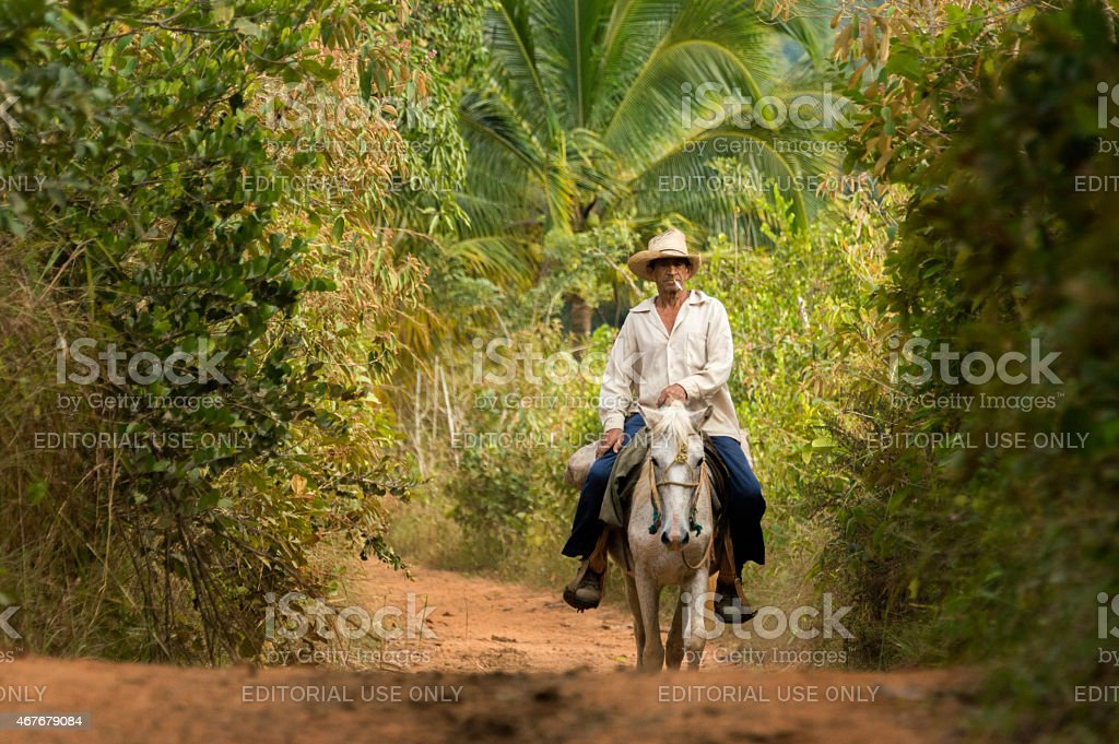 Man riding a horse in Vi?ales national park, Cuba stock photo