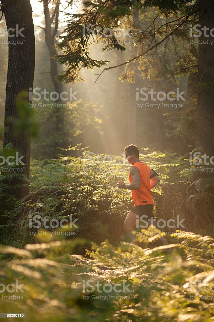 Man running in forest stock photo
