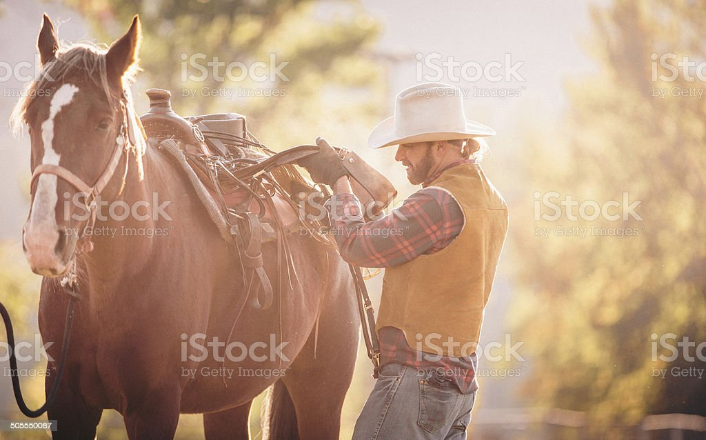 Man saddles horse and prepares to ride during beautiful sunrise royalty-free stock photo