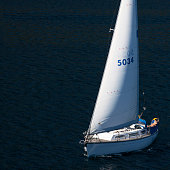 Man sailing on the Cook Strait in New Zealand