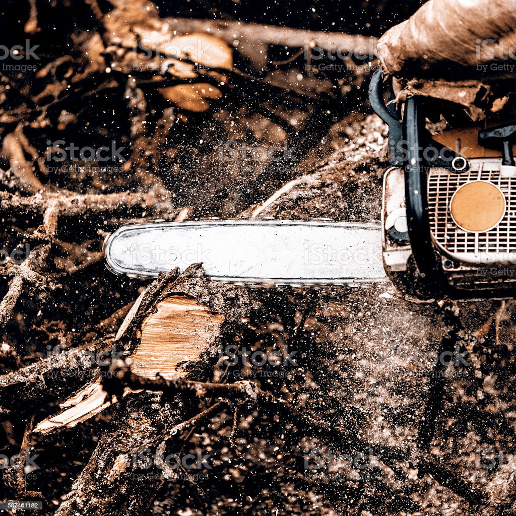 Man sawing a log in his back yard stock photo