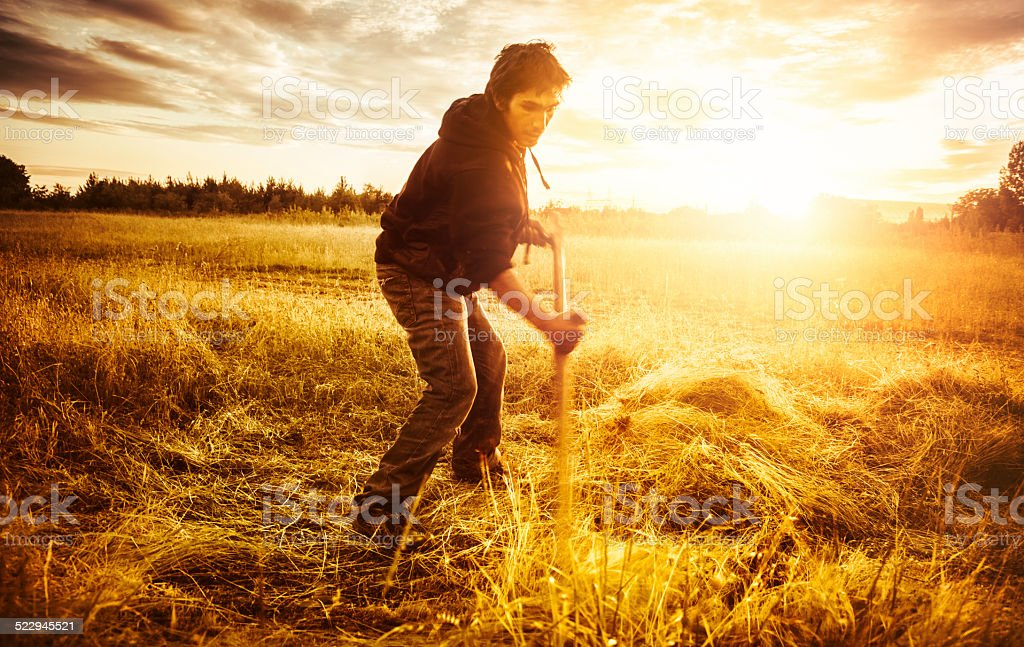 Man scything grass on field at sunset stock photo