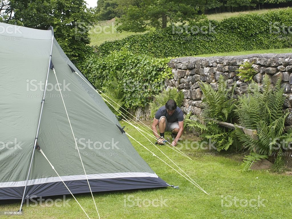 Man securing the guy ropes of a tent. stock photo