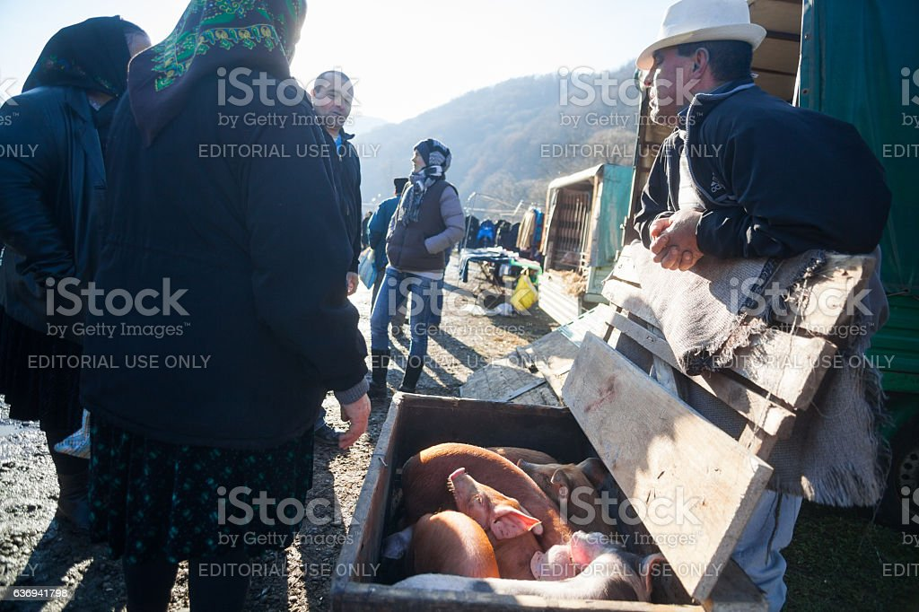 Man selling pigs in an outdoor market stock photo