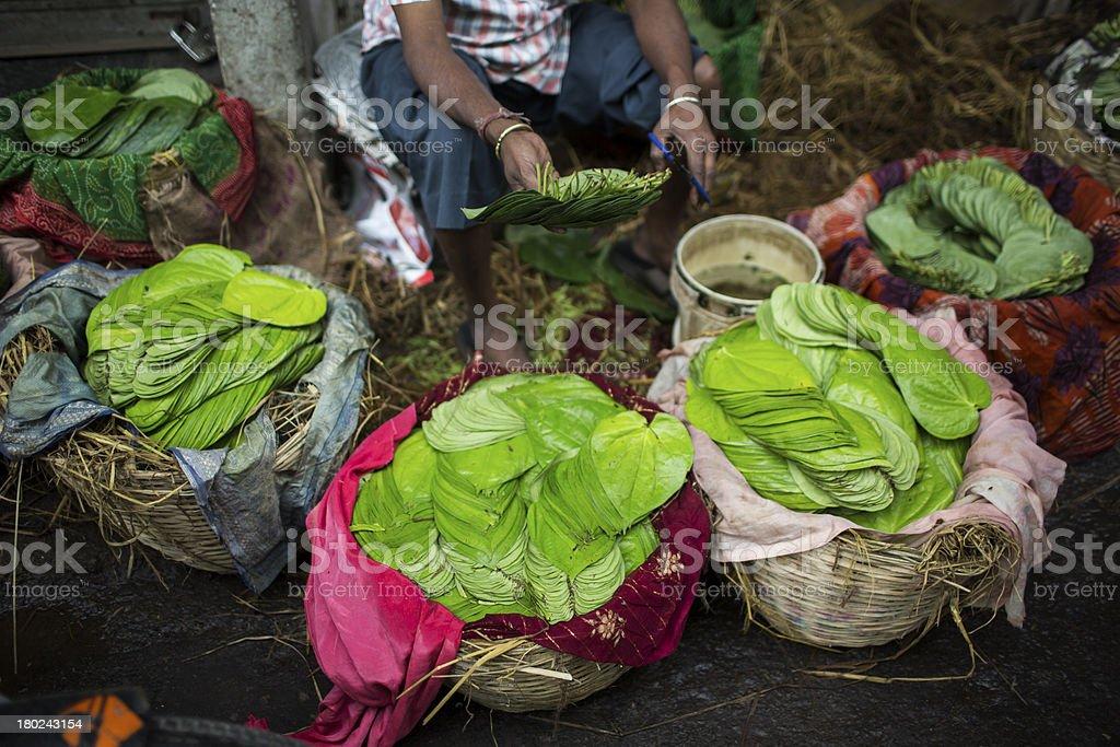 Man sells leaves on street stock photo