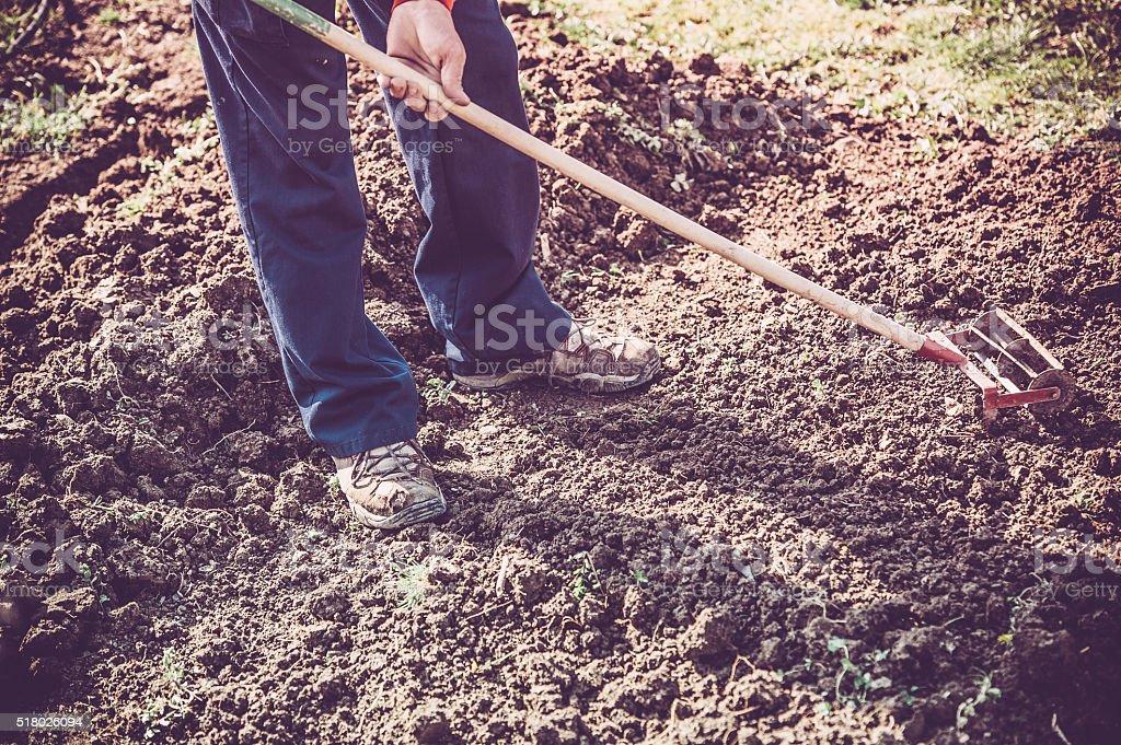 Man Shoveling the Soil in Garden stock photo