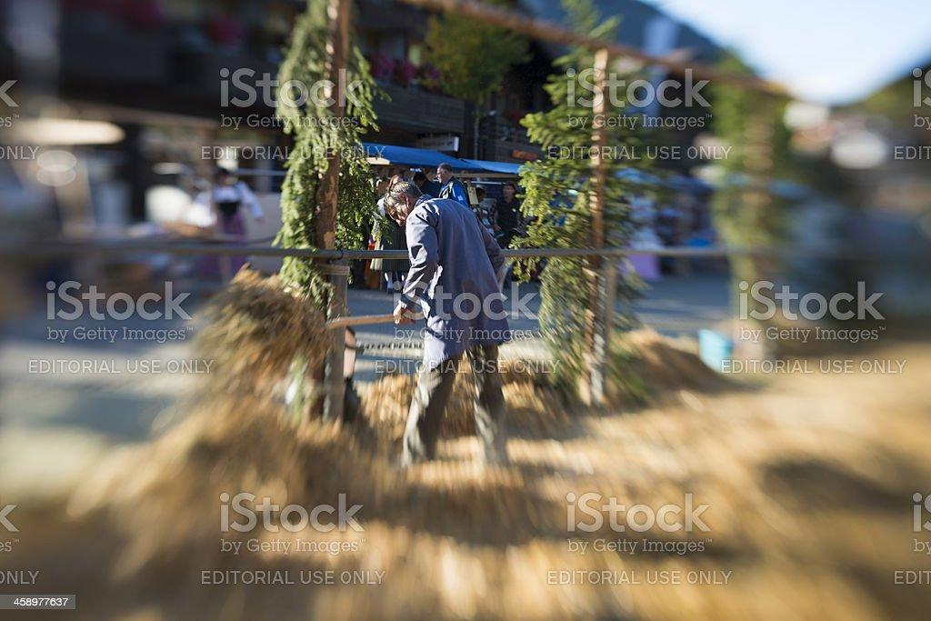 Man Shovels Hay at Agricultural Fair royalty-free stock photo