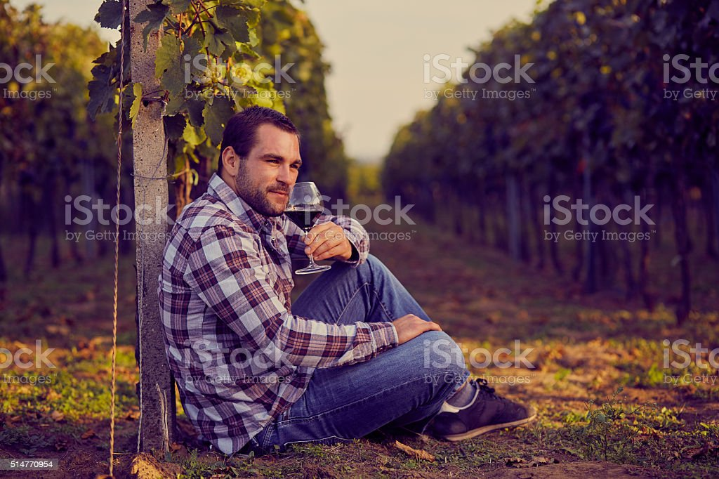 Man sitting in vineyard stock photo