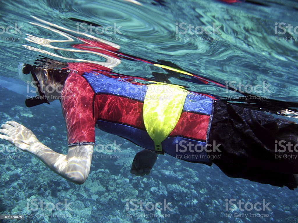 Man snorkeling with wetsuit underwater in Maui, Hawaii stock photo