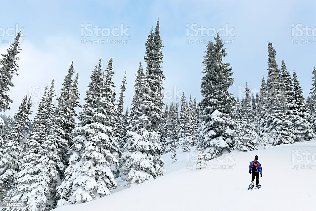 XXL man snowshoeing royalty-free stock photo