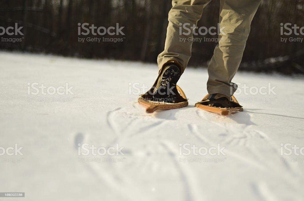 Man snowshoeing royalty-free stock photo