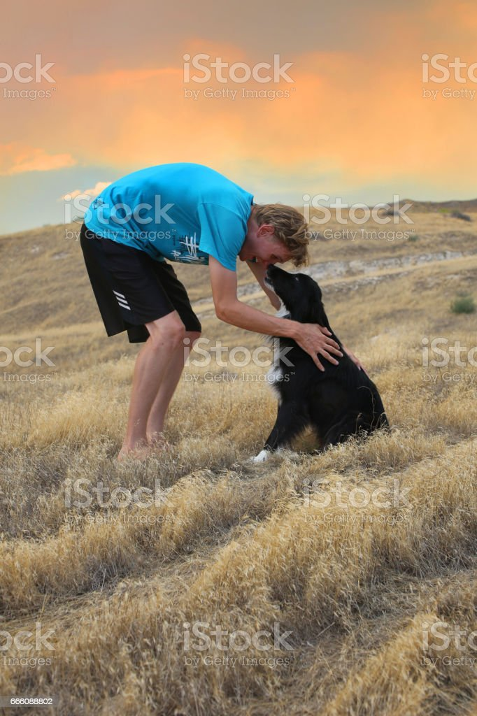 Man Snuggling with a Border Collie Dog in front of a Beautiful Sunset stock photo