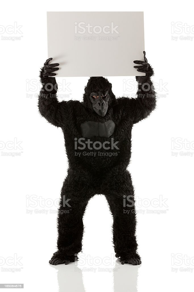 Man stading in gorilla costume with a placard royalty-free stock photo