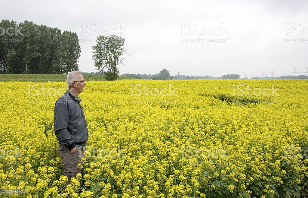 man standing and wathing nature stock photo