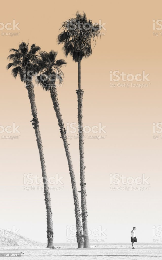 Man Standing on Beach Next to Tall Palm Trees, Toned royalty-free stock photo